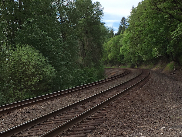 Railroad tracks near Ridgefield Wildlife Animal Refuge. Photo Credit: J.H. Winter