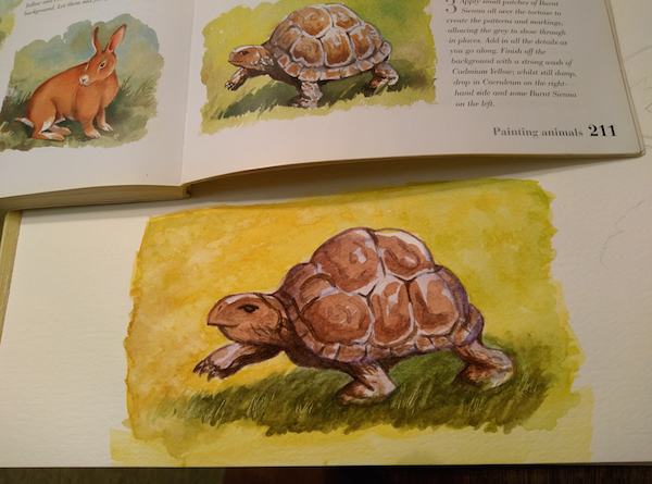 turtle-watercolor-2