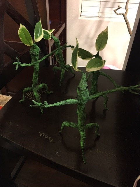 A Group of Bowtruckles. Photo Credit: J.H. Winter