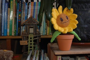 A Happy Sunflower in its Forever Home. Photo Credit: Jenn Shelby.